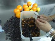 Preparando La Limonada- 2017